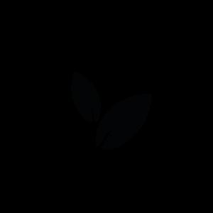logo-HZ